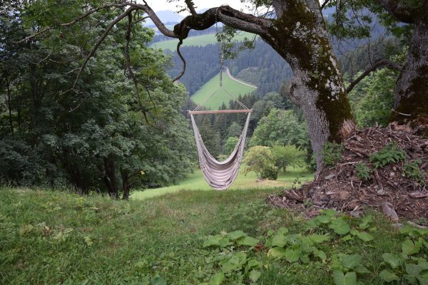 Hammock Chair Under the Tree