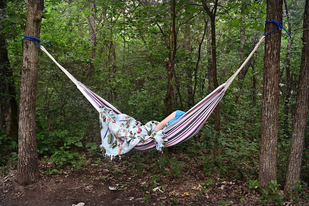 hammock with a blanket